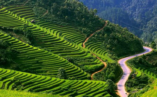 vietnam tour itinerary